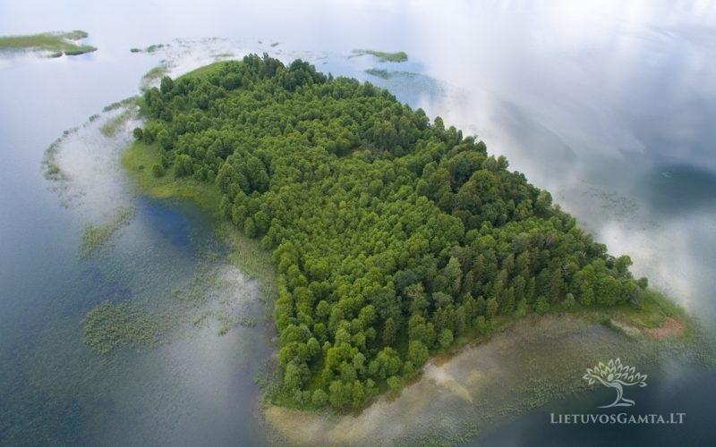 Platelių ežero salos